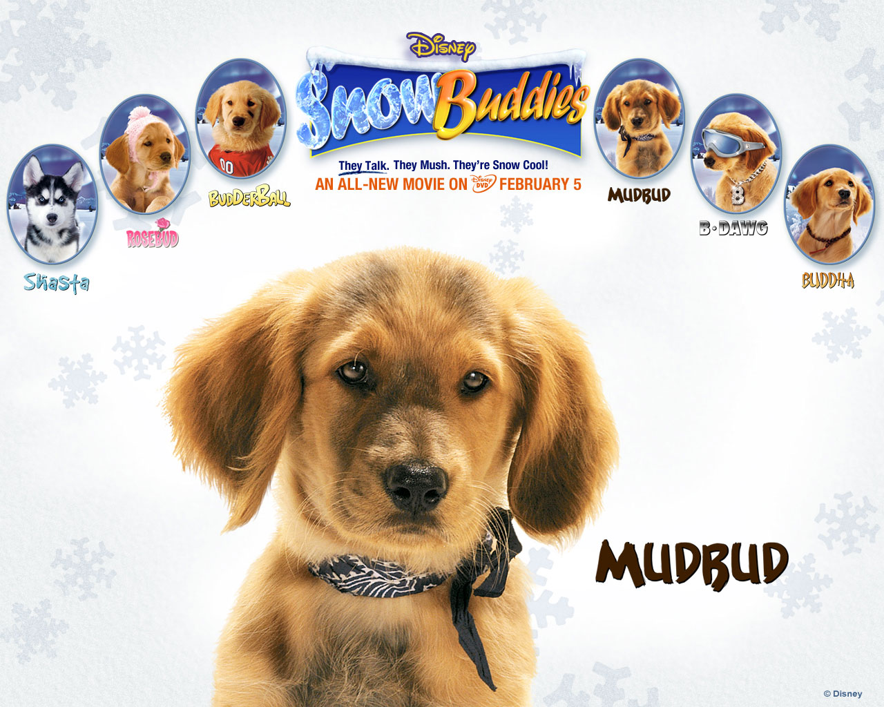snow buddies mudbud
