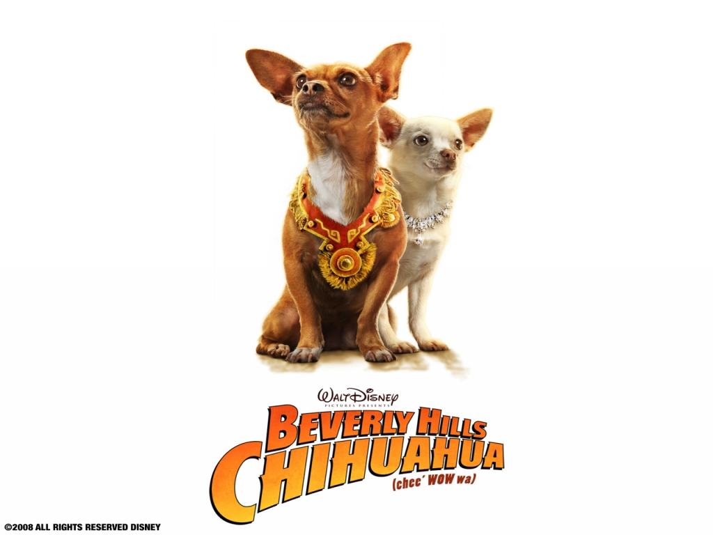 Beverly-Hills-Chihuahua-1024x768