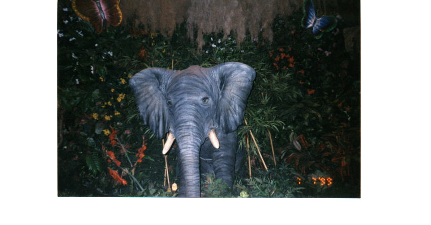 disney Elephant in Rainforest Cafe