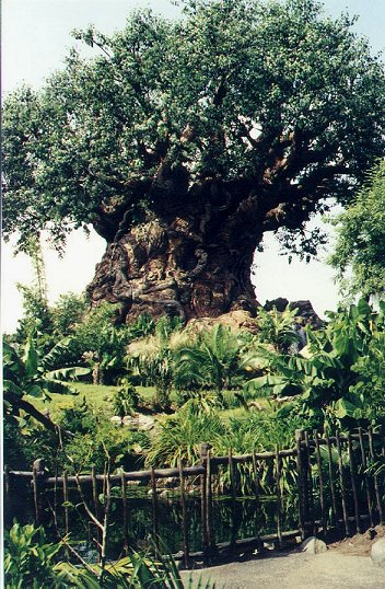 disney tree of life